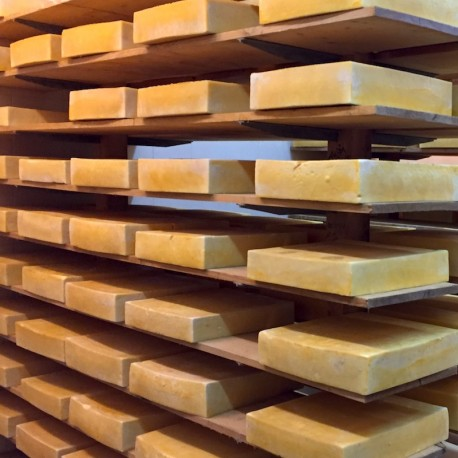 Caşcaval de brânză de vaci Gauda Regina