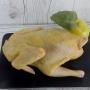 Carne de găină de casă